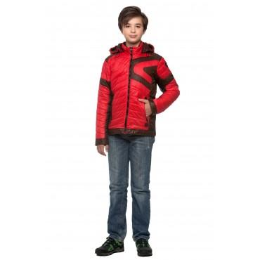 Куртка Модель 17-11